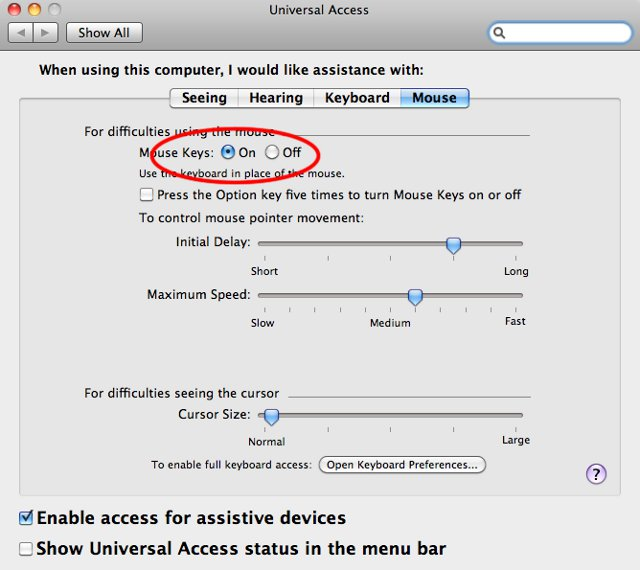 Screenshot of Universal Access control panel for Mouse