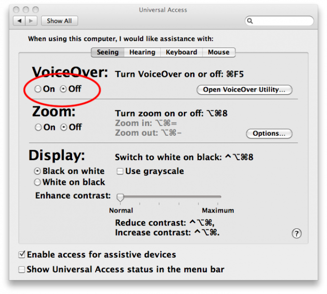 Screenshot showing OS X Universal Access Seeing options