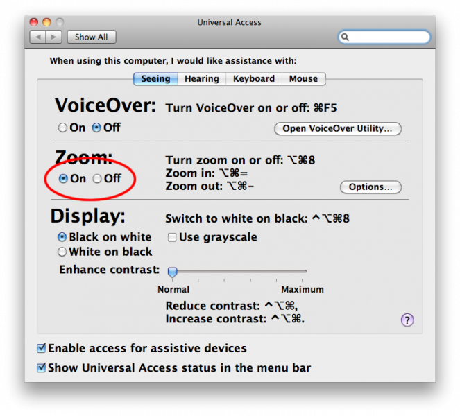 Screenshot of OS X Universal Access Seeing options